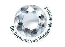 Resultaten en voortgang de Diamant van Midden-Nederland