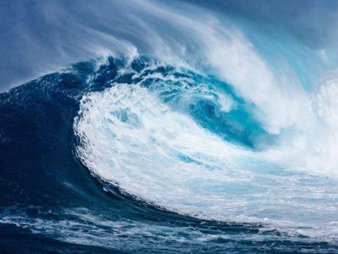 De innovatiekracht van water