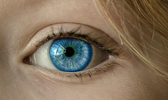 Leer meer over Human Profiling