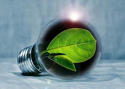 Energieke Noord-Veluwse Bedrijven