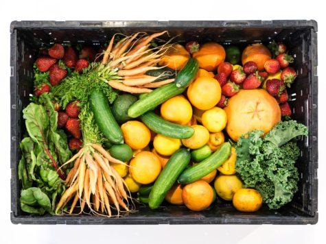 Experttafel Voedseltransitie op 6 februari