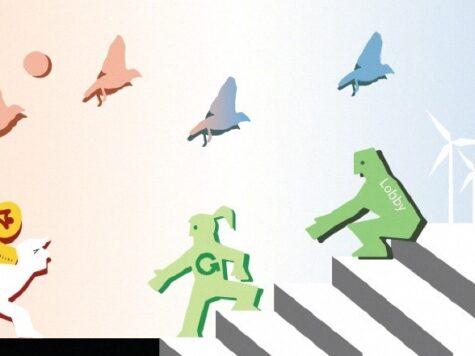 Groene Groeiers presenteren 14 innovatieve oplossingen voor terugdringen stikstof
